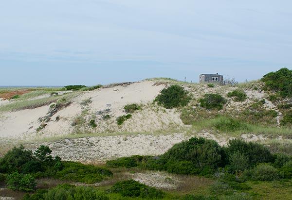 dune-shak